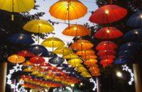 Umbrella Agreement / Umowa parasolowa